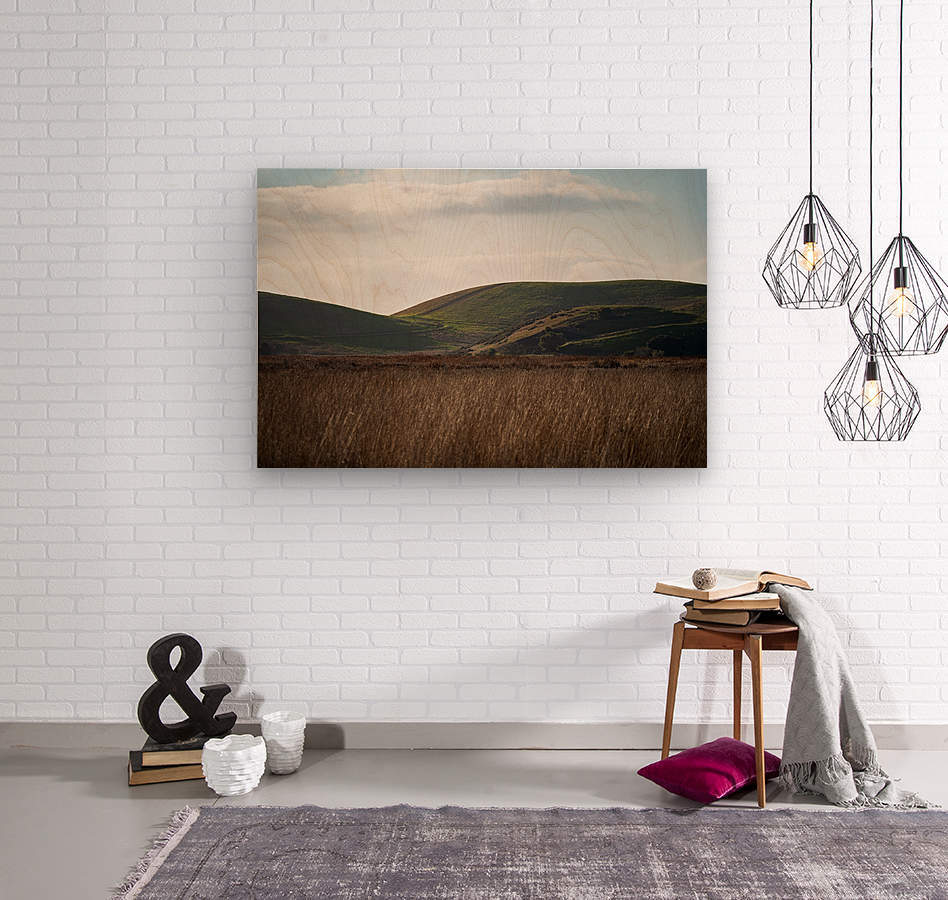 Coyote Hills During Sunset  Wood print