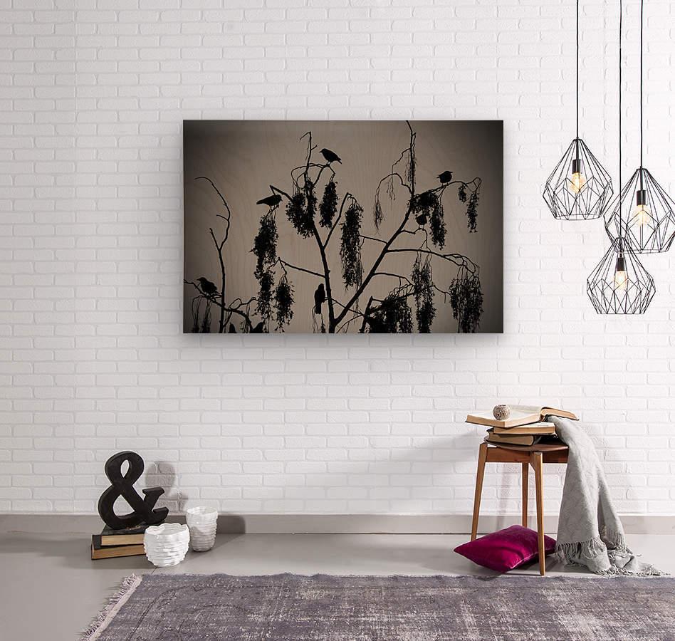 Crows 2016   1  Wood print