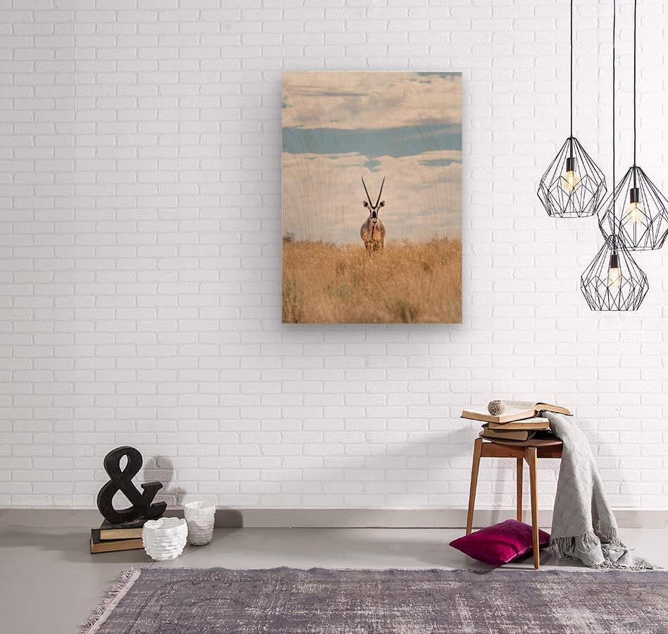 The Staredown  Wood print