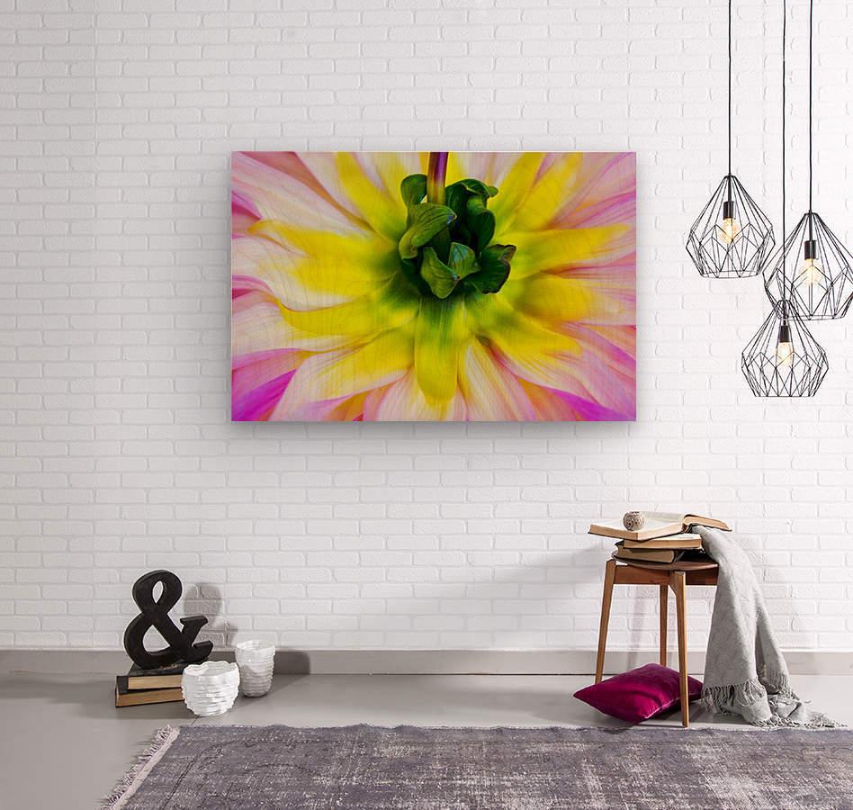 Pink Yellow Green   Wood print