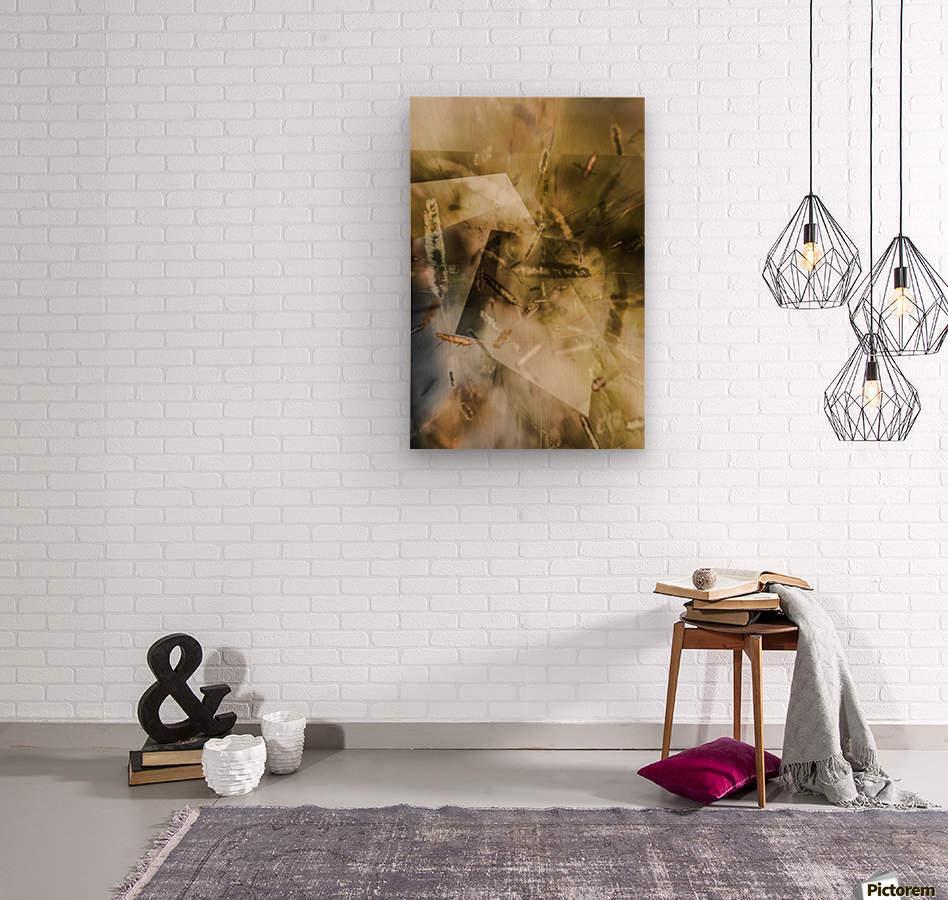 Sweet Grass    Wood print