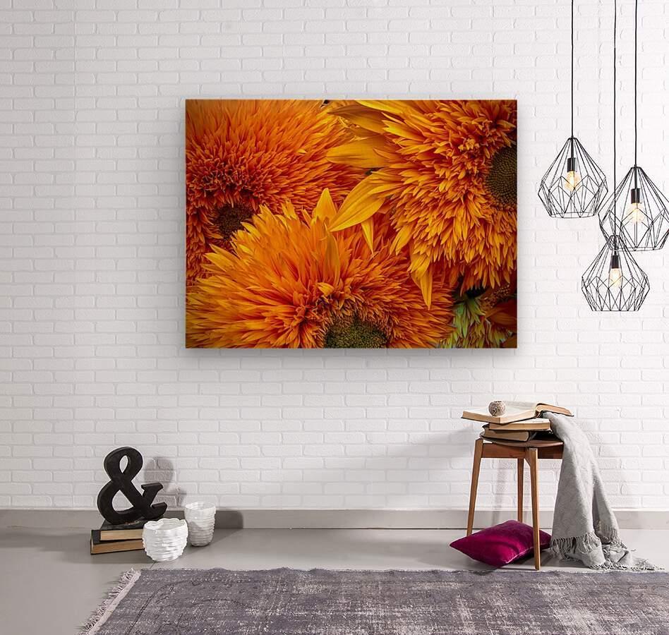Fluffy Yellow Sunflowers  Wood print