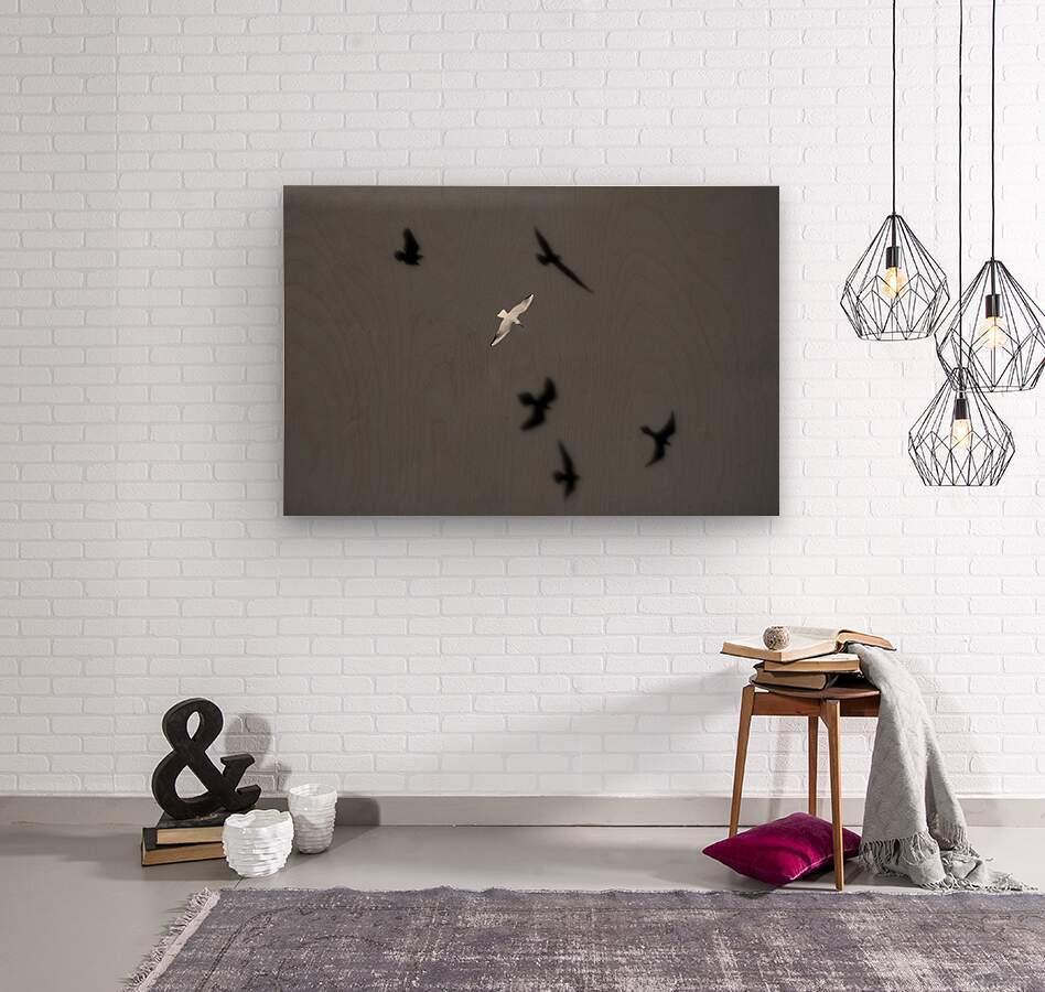 Bird and Shadows  Wood print