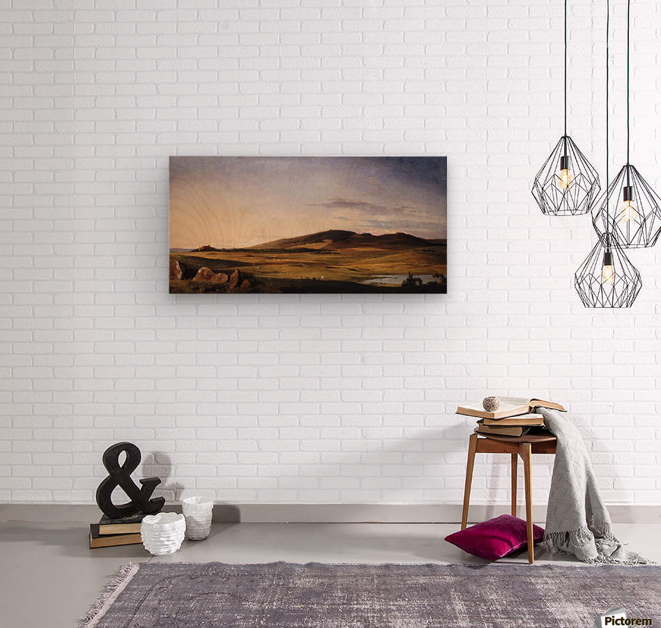 Zealand Landscape  Wood print