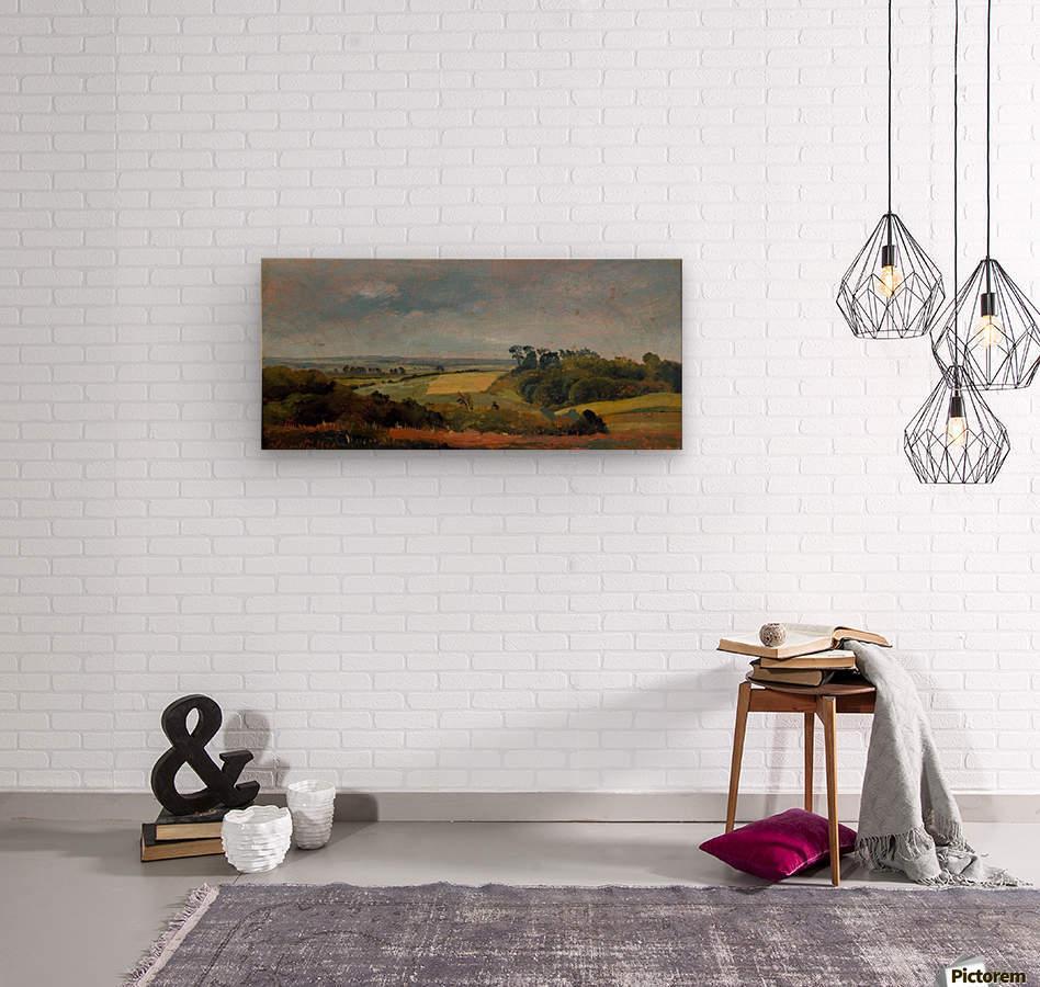 Near Hobjerg  Wood print