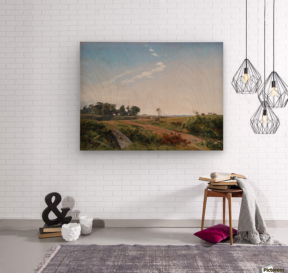Zealand Landscape. Open Country in North Zealand  Wood print