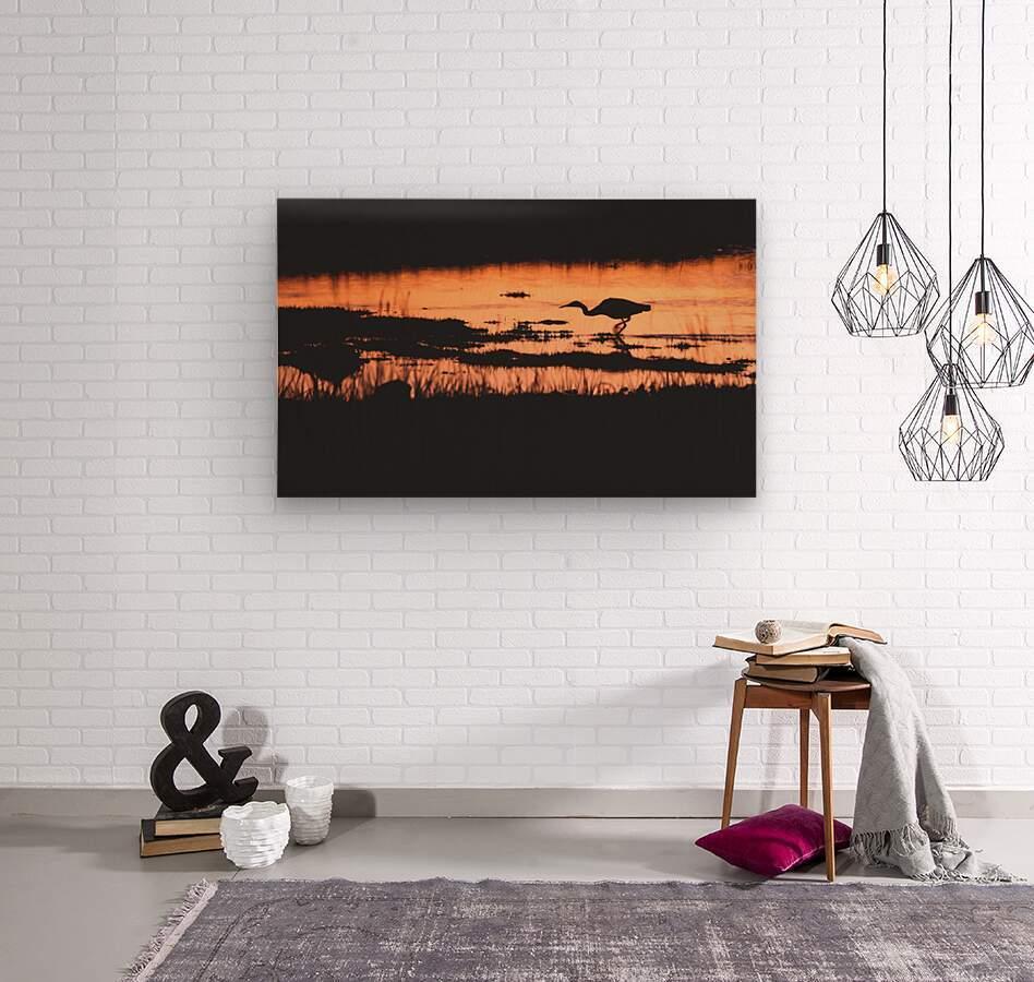 Heron hunt  Wood print