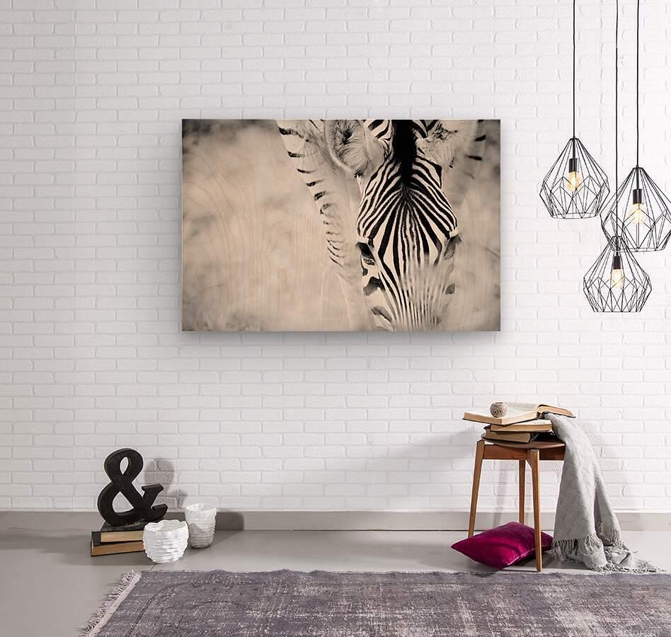 AdriaanPrinsloo 6718  Wood print