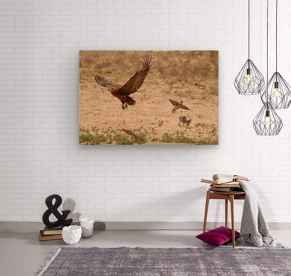 AdriaanPrinsloo 7140 2  Wood print