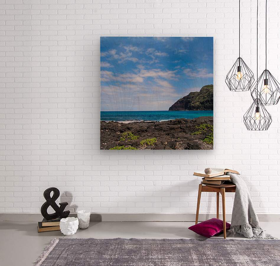 Hawaii Cliff and Coastline Square Panorama  Wood print