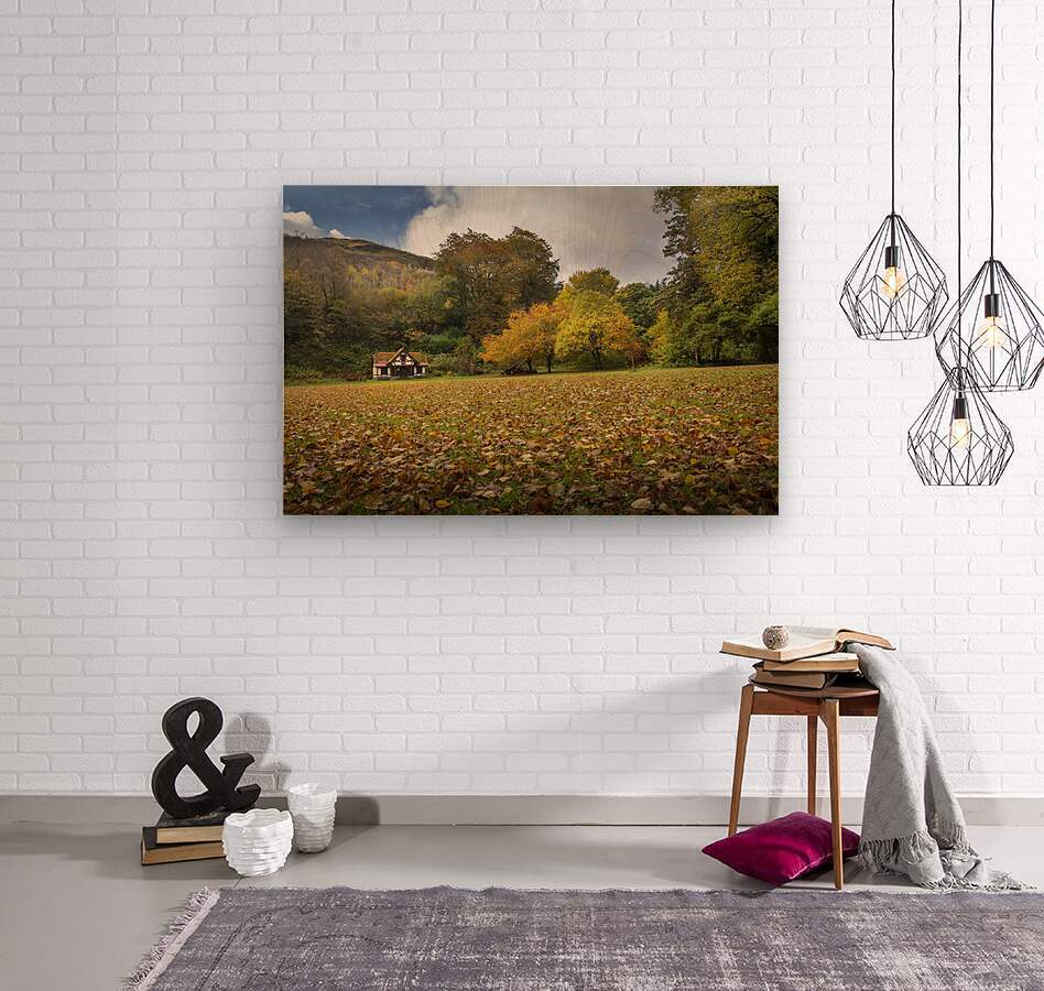 Autumn at Craig-y-Nos Country park   Wood print