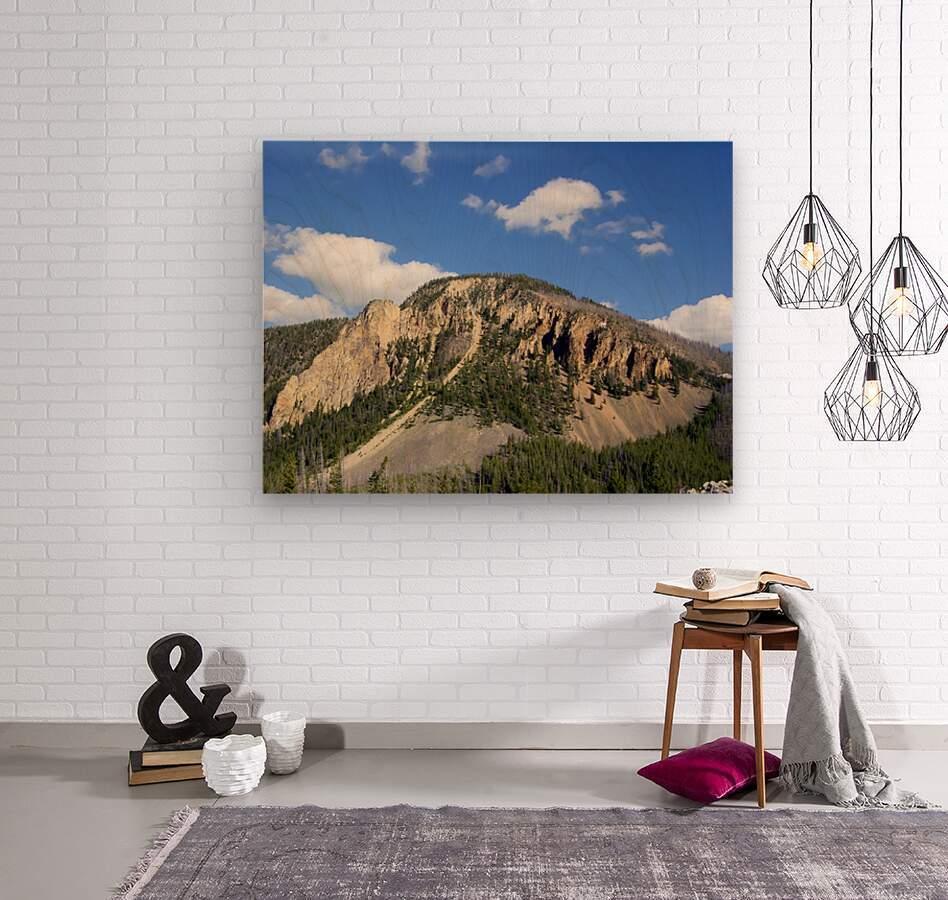 Yellowstone National Park 2  Wood print