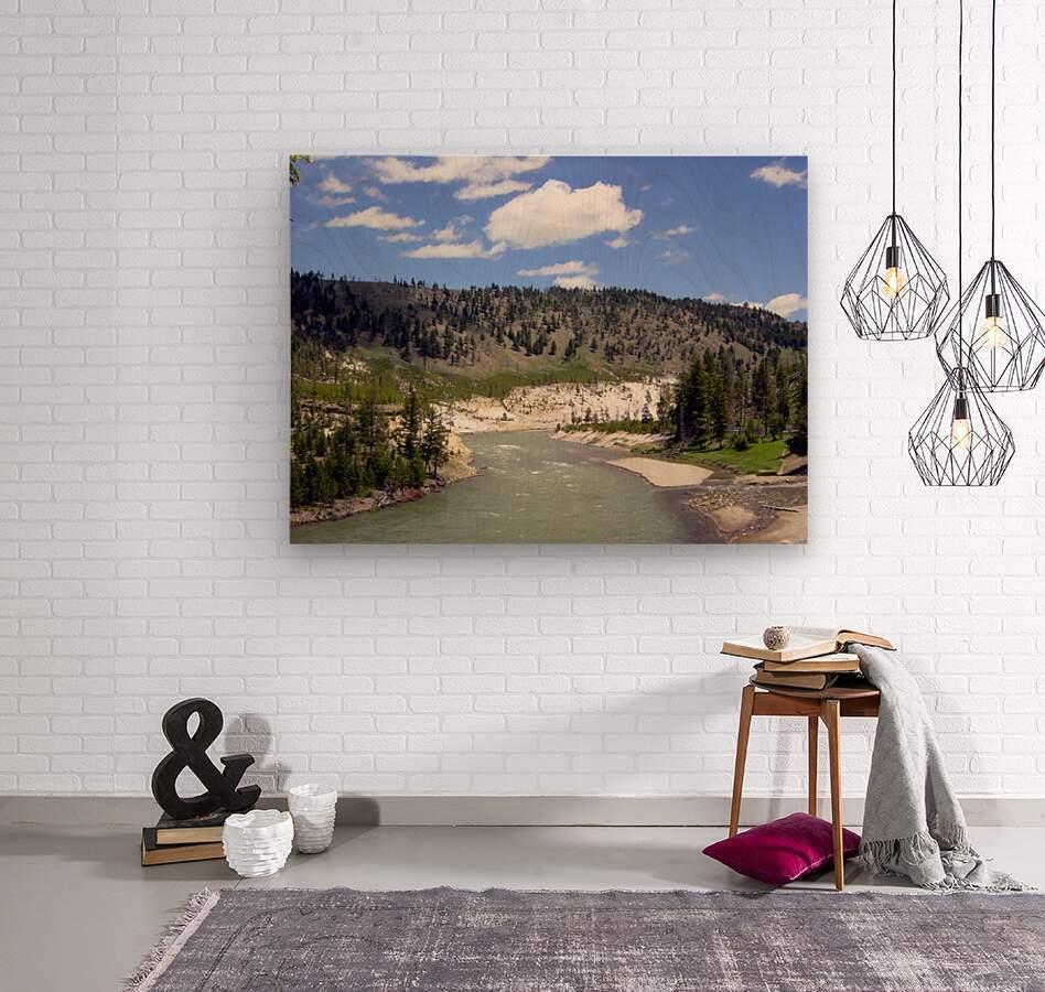 Yellowstone National Park 3  Wood print
