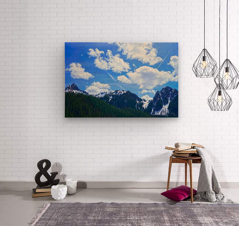 In the Cascade Mountains  Wood print