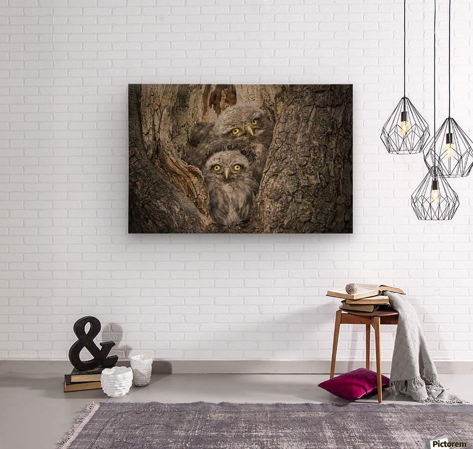 Civ and Civ by Alberto Ghizzi Panizza  Wood print