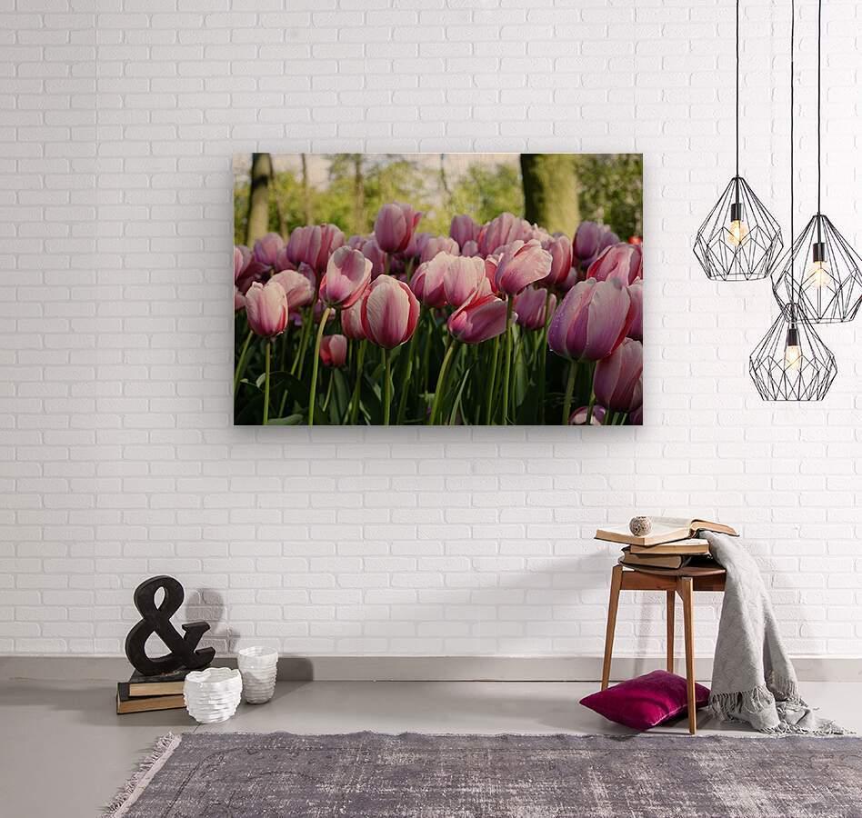 Pink & White  Wood print