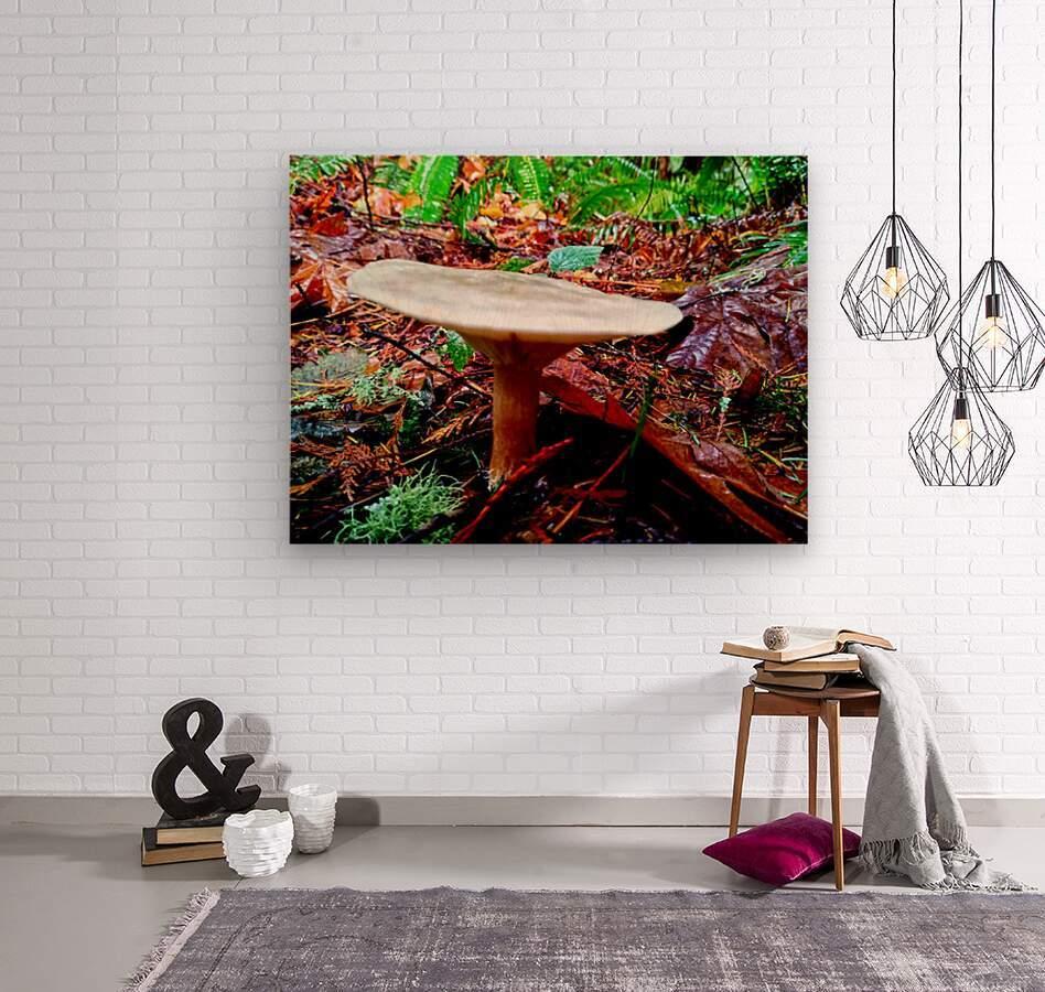 Tiny World 4 of 8 - Mushrooms and Fungi  Wood print