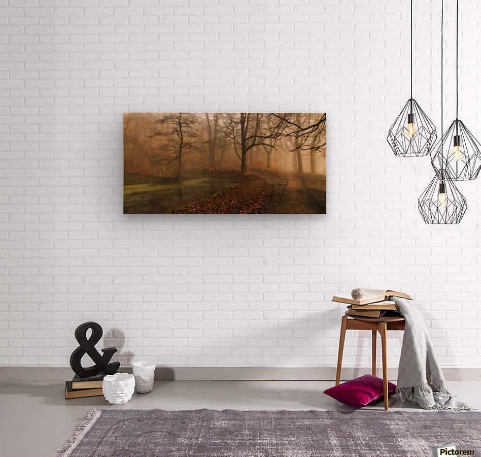 Which Path II  Wood print