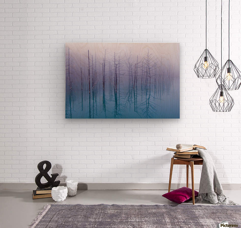 Misty Blue Pond  Wood print