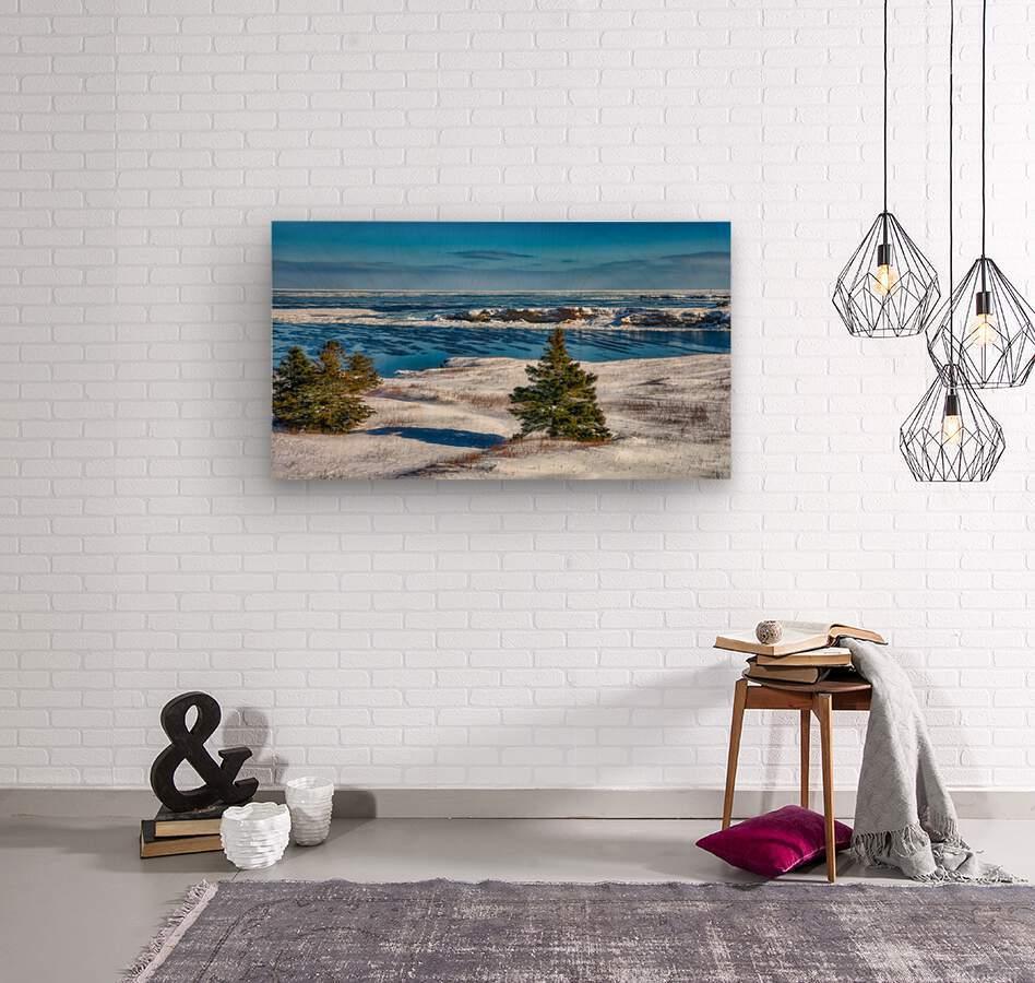 Pointe Saint-Pierre et lIle Plate  Wood print