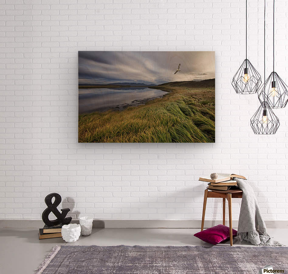 Stillness by Bragi Ingibergsson -  Wood print