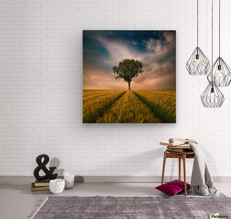 One by Piotr Krol (Bax)  Wood print