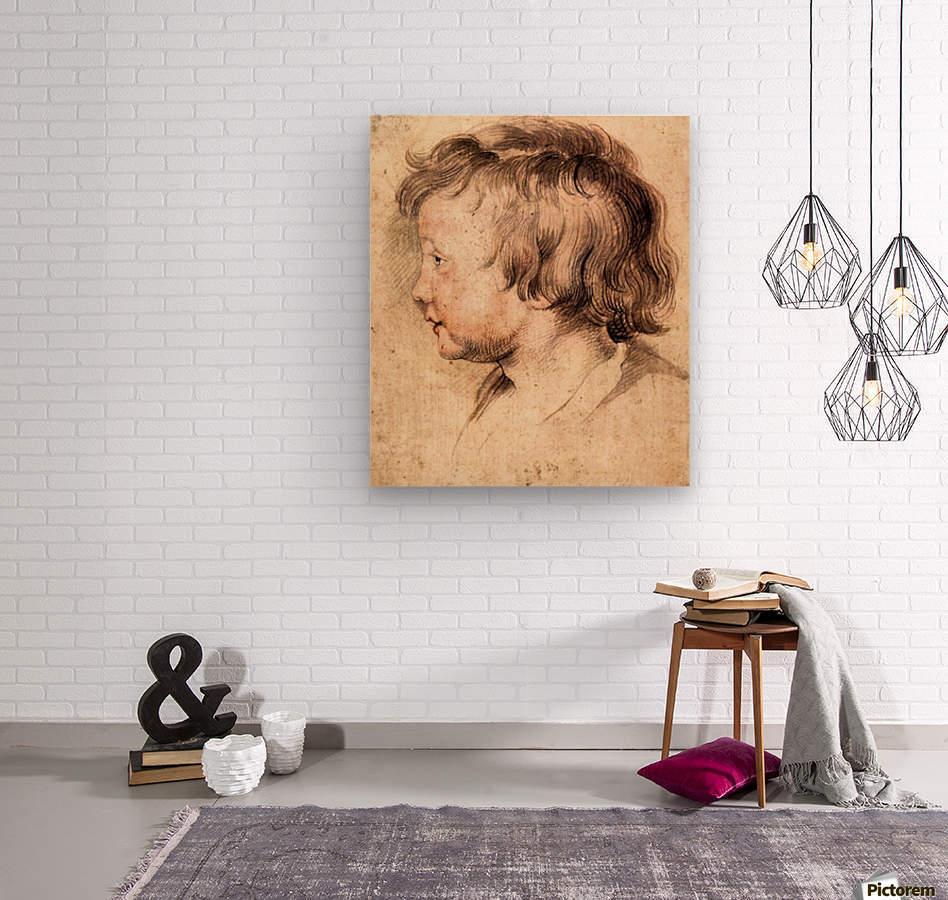 Son Albert by Rubens  Wood print