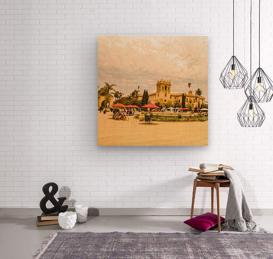 One Day in San Diego  Wood print