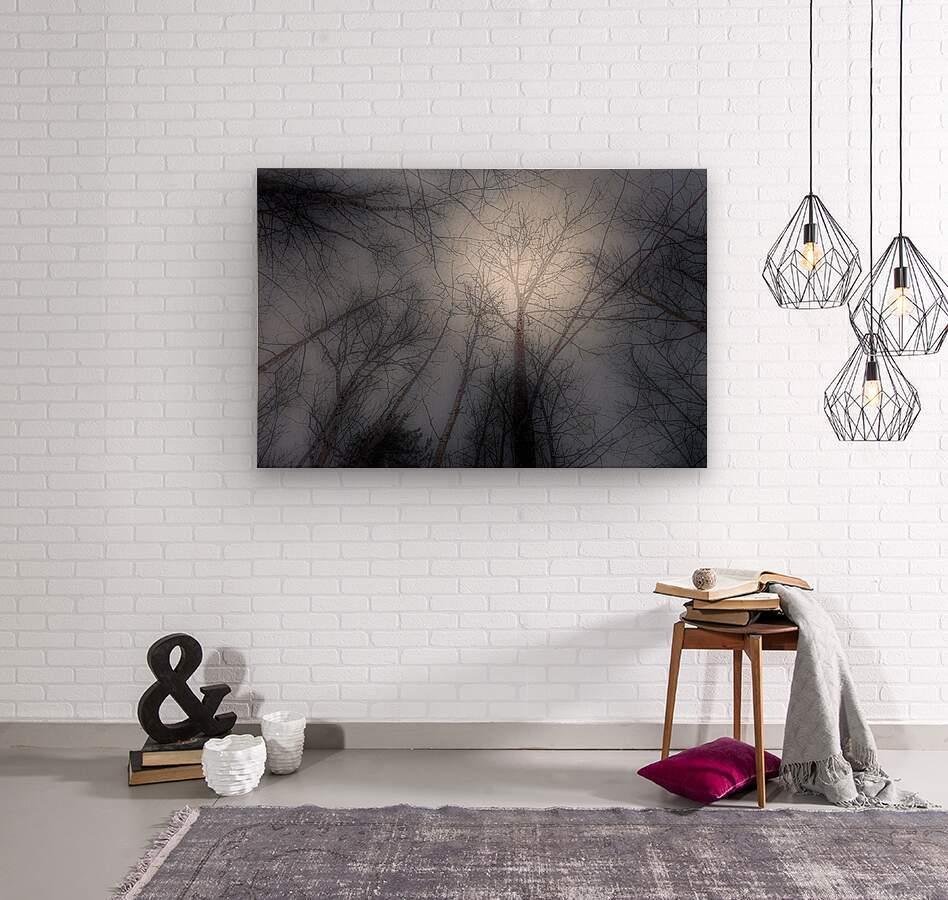 Espoir  Wood print