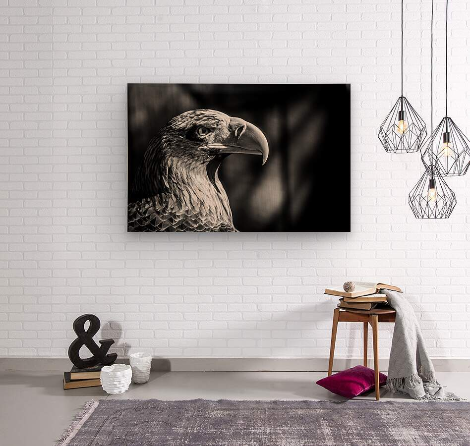 Eagle ap 2046 B&W  Wood print