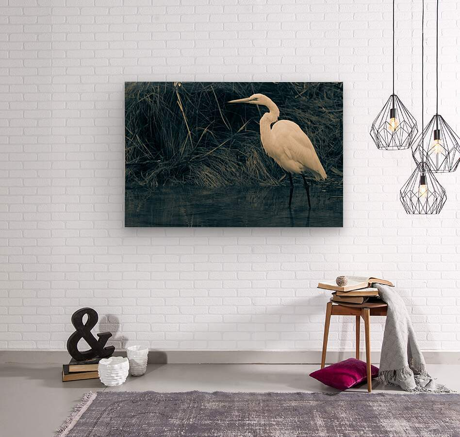 Great White Egret ap 1839 B&W  Impression sur bois