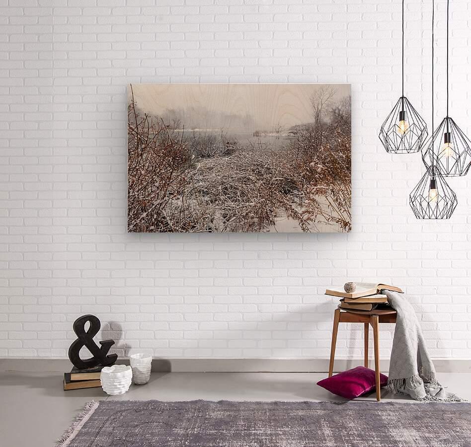 Winter ap 2708  Wood print