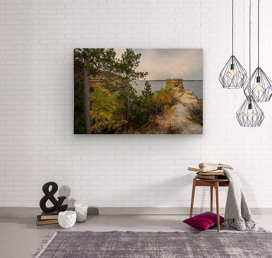 Miners Castle ap 2582  Wood print