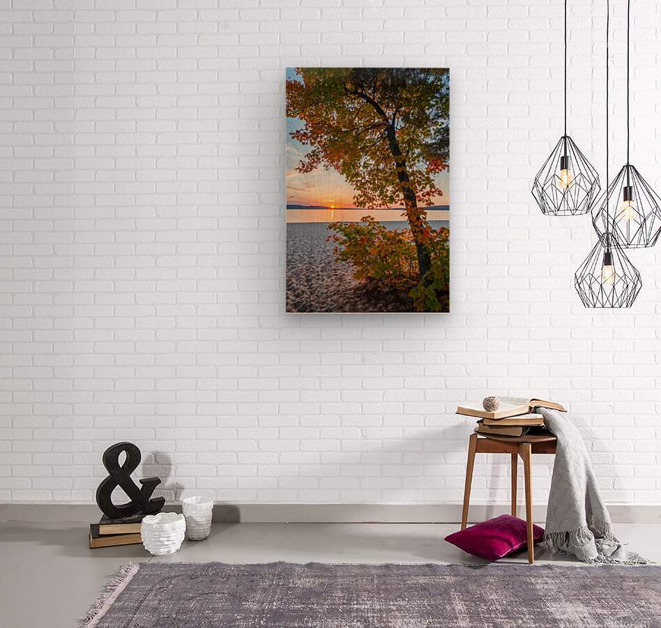 Sunset ap 2574  Wood print