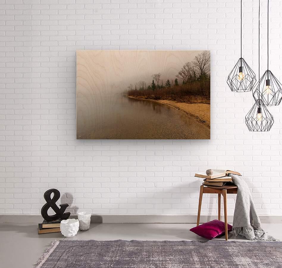 Profile Lake ap 2192  Wood print