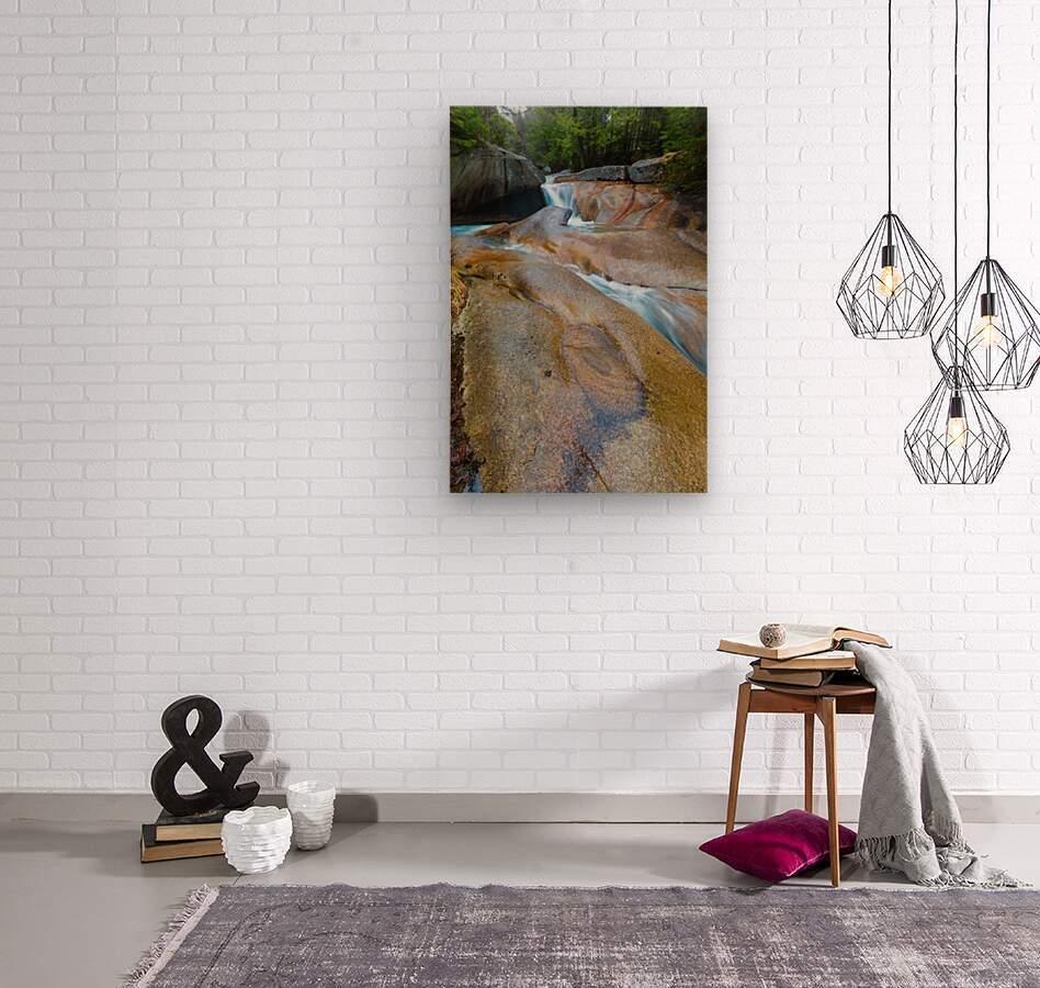 The Basin ap 2162  Wood print