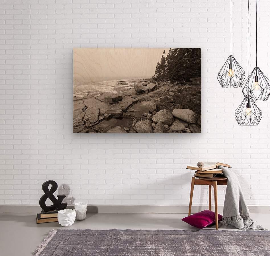 Boulders ap 2256 B&W  Wood print