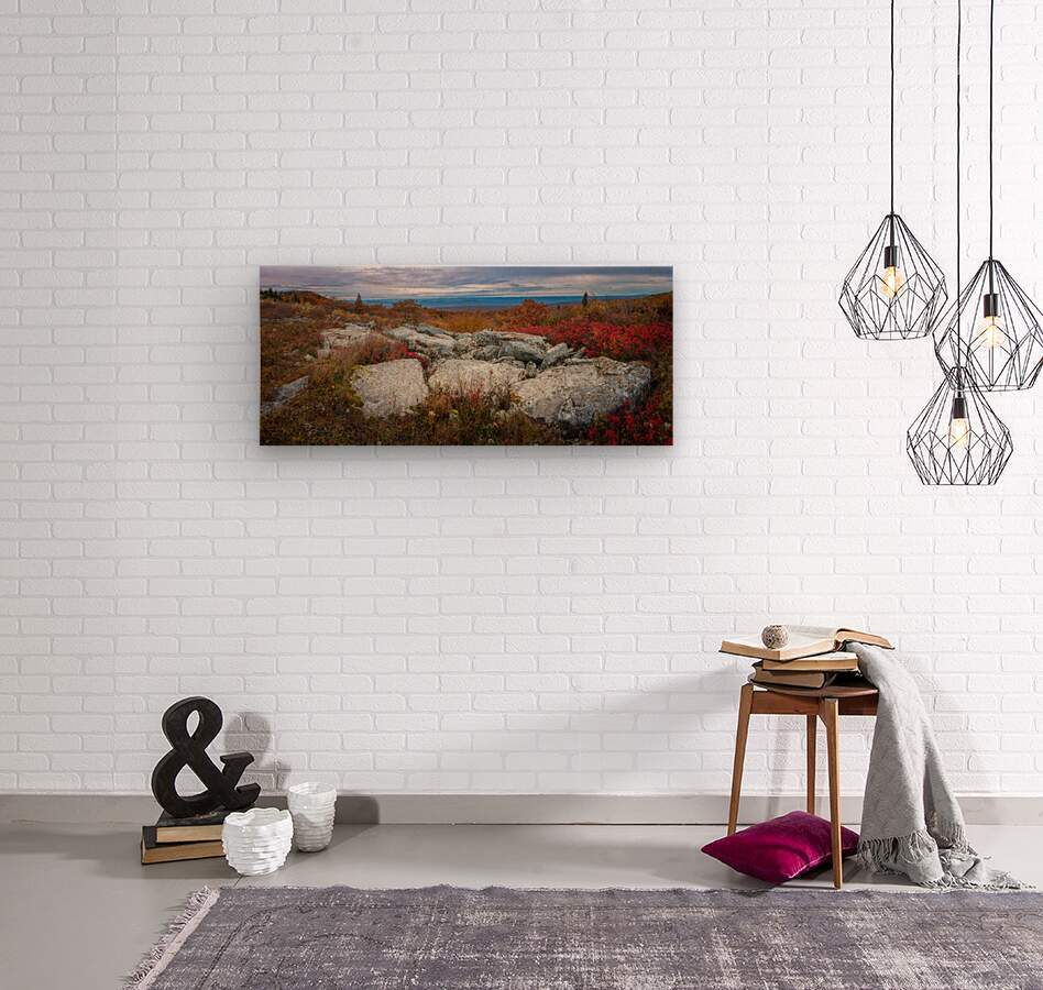 The Colors of Nature apmi 1781  Wood print