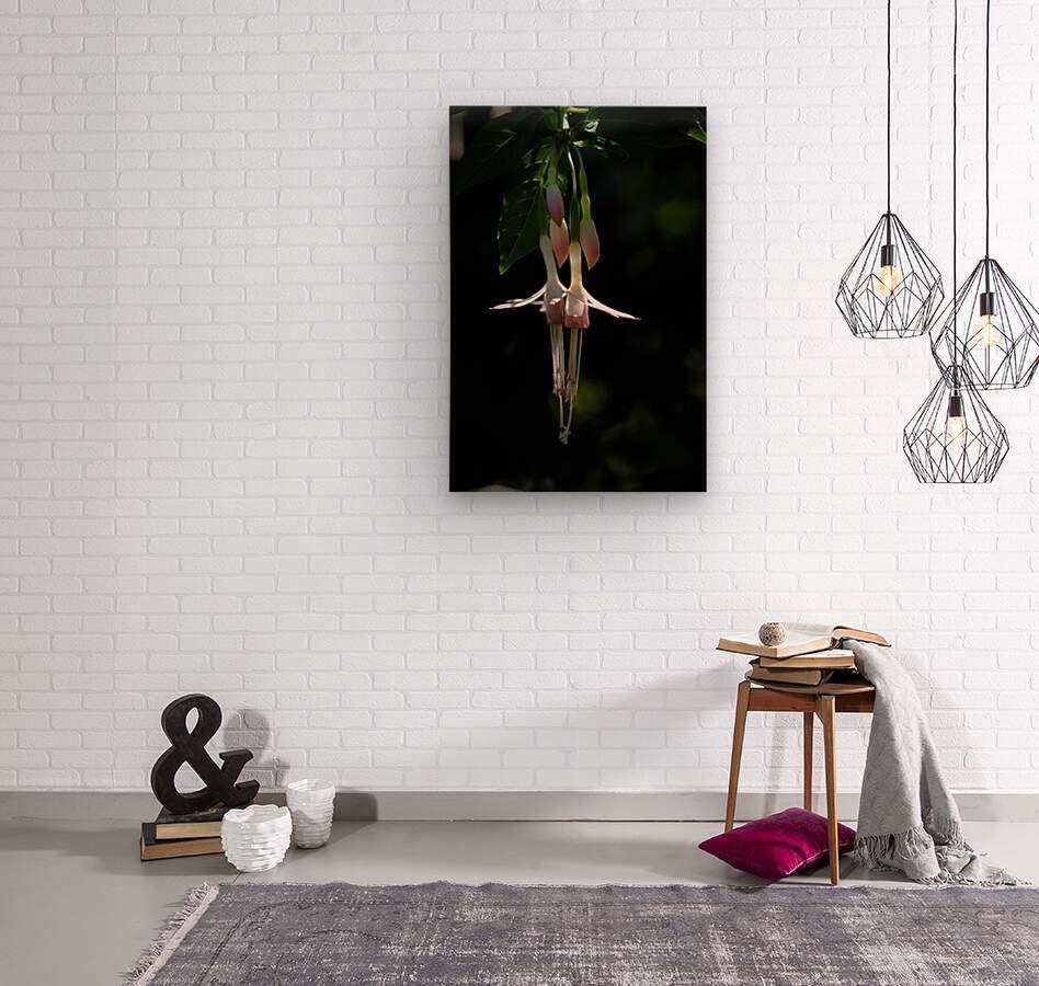Gently Hanging  Wood print