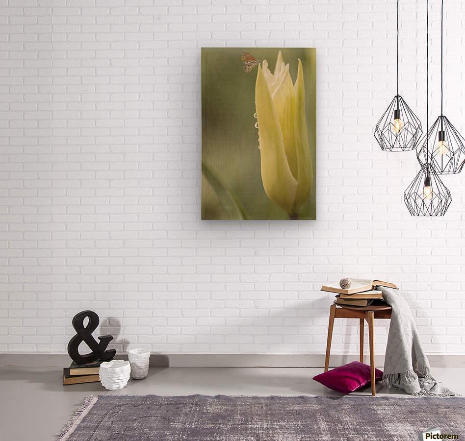 Spirit Of Love - Spring Art by Jordan Blackstone  Wood print