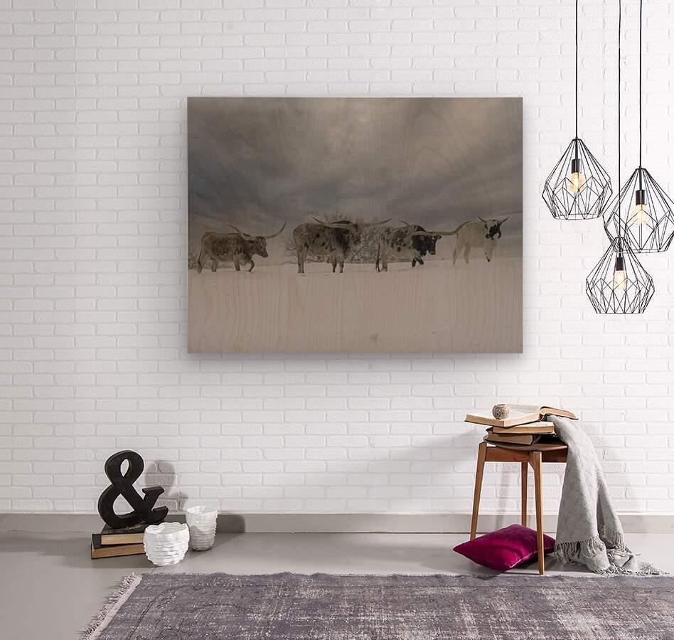 Longhorns  Wood print