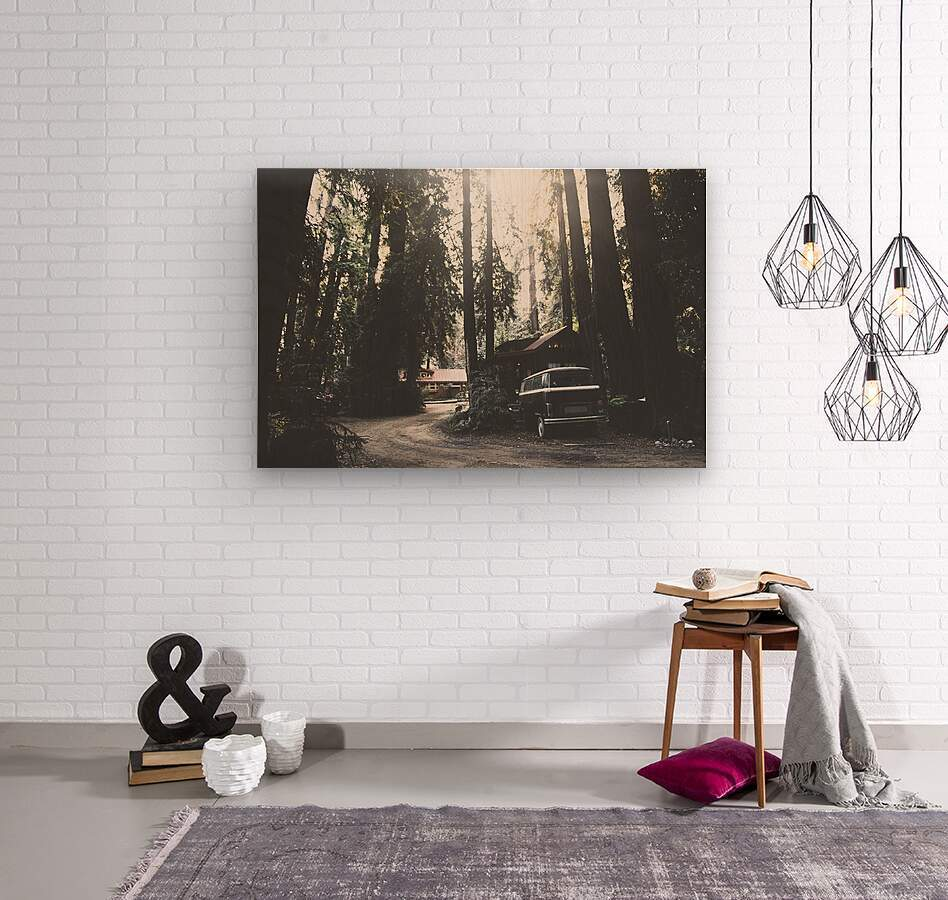Big Sur Camping  Wood print