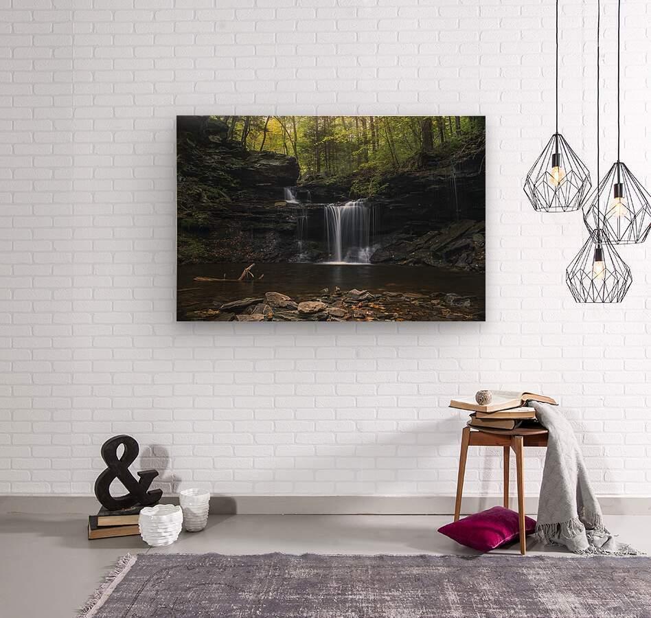 RB Ricketts Falls  Wood print