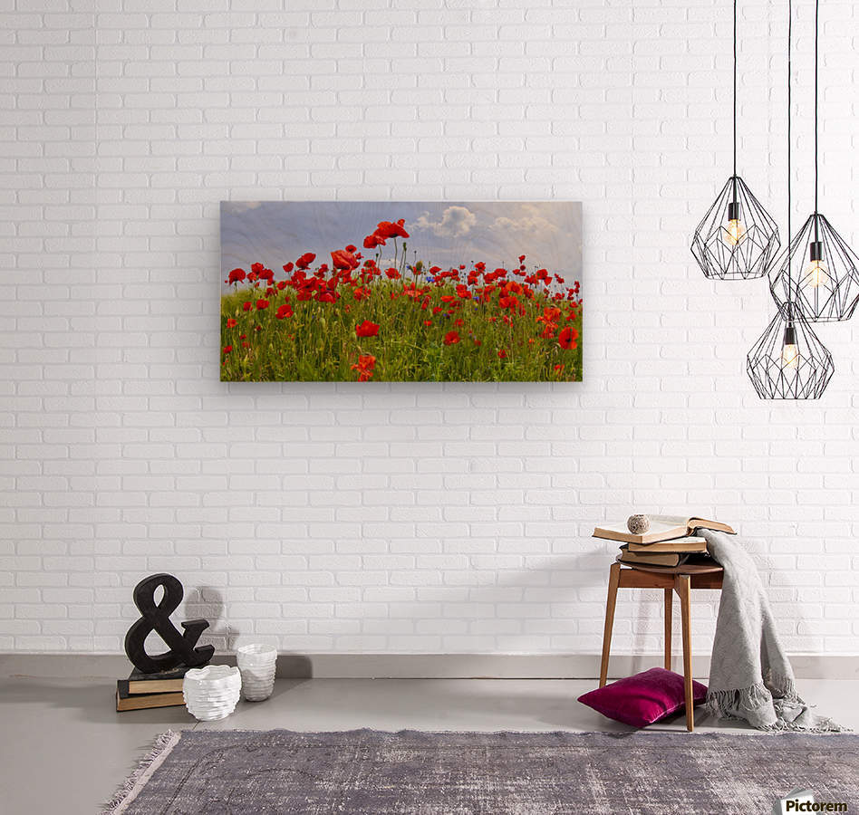 Field of Red Poppies  Wood print