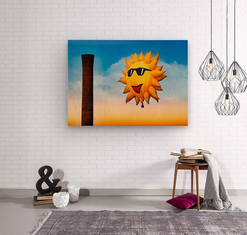 Sunny and the Smokestack  Wood print