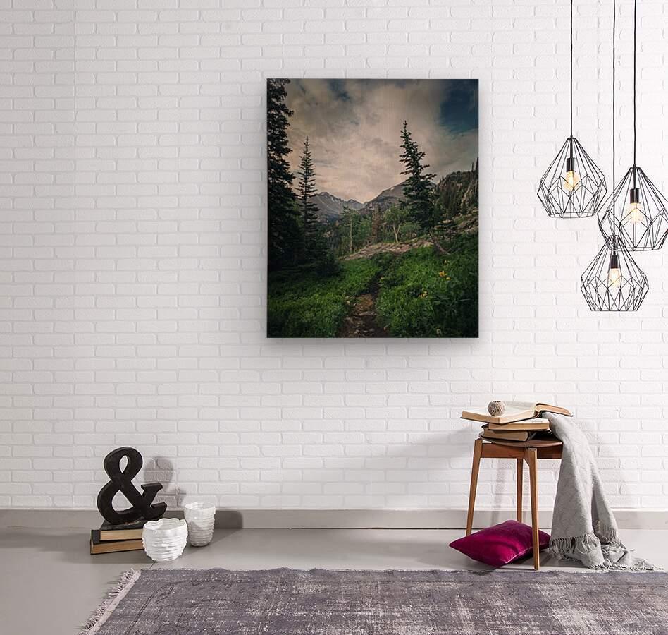 Rocky Mountain National Park  Wood print