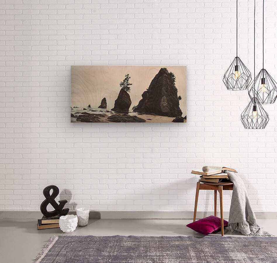 Shi Shi Beach  Wood print
