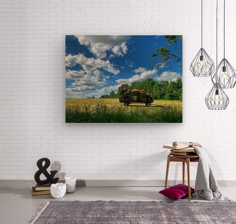 Farm Life   Wood print