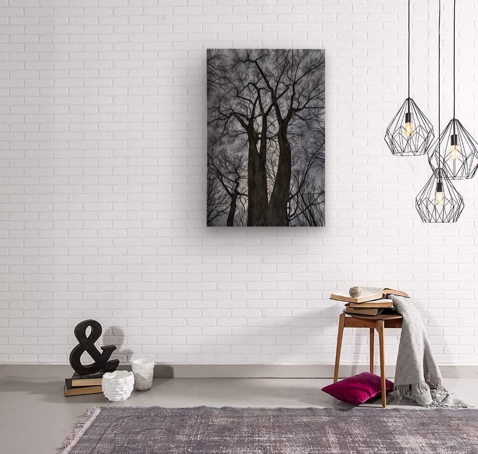 Feux d artifice  Wood print