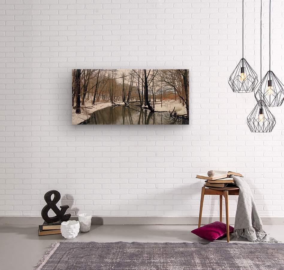 Lake Panorama  Wood print